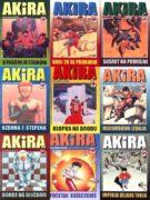 Akira tile 2
